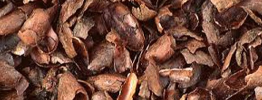 Cocoa Mulch – Toxic to Dogs & Cats